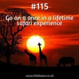 365 things to do with money from Kite Loans - Go on a once in a lifetime safari experience #loan #fastloan #quickcash #finance #safari #africa #experience #lion #giraffe